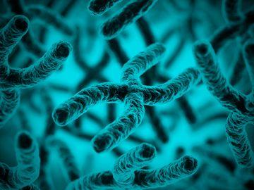 Curso Medicina Genómica – aplicaciones en genética clínica