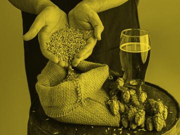 Perfección cervecera y emprendimiento