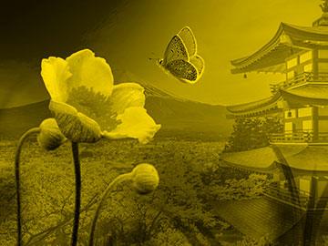 Haiku: la poesía japonesa más corta del mundo