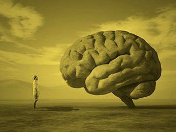 Curso Mindfulness y psicología: práctica y evidencia empírica