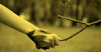 Curso Herramientas SIG aplicadas a estudios y proyectos ambientales