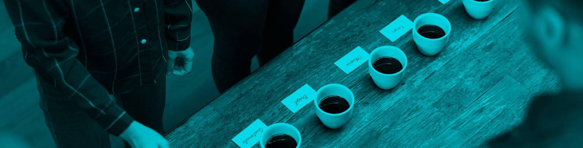 Curso El arte de catar y preparar un buen café