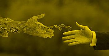 Economía ambiental y política pública
