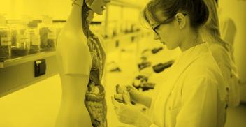 Evaluación para el aprendizaje en salud