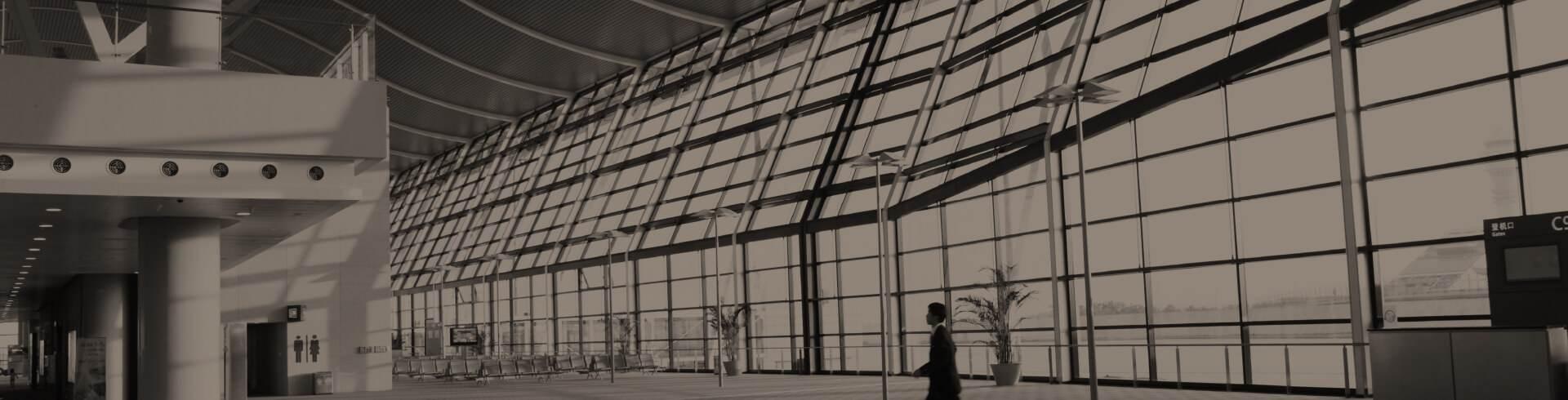 Arquitectura metálica: proyecto y realización