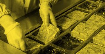 Conservación e inocuidad en alimentos: métodos actuales y emergentes