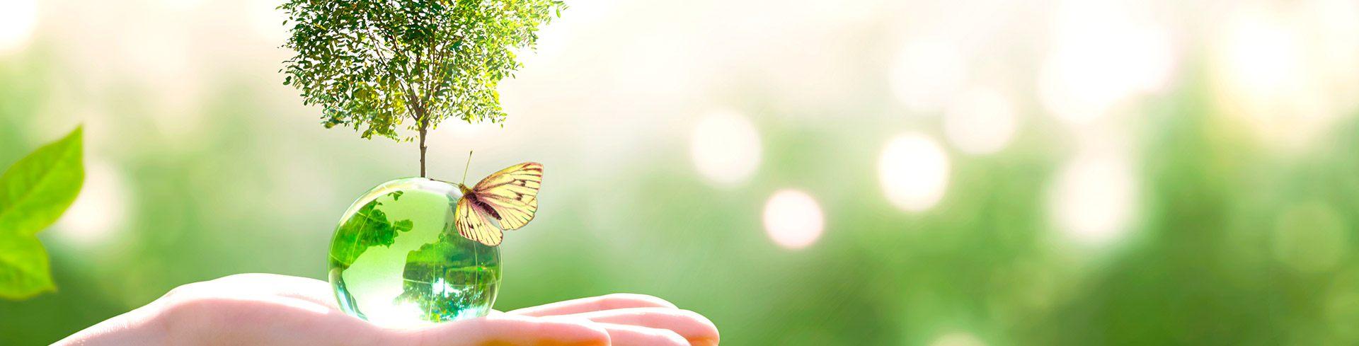 Sostenibilidad integral y bio-economía