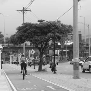Ciudadanía en el desarrollo urbano y calidad del aire