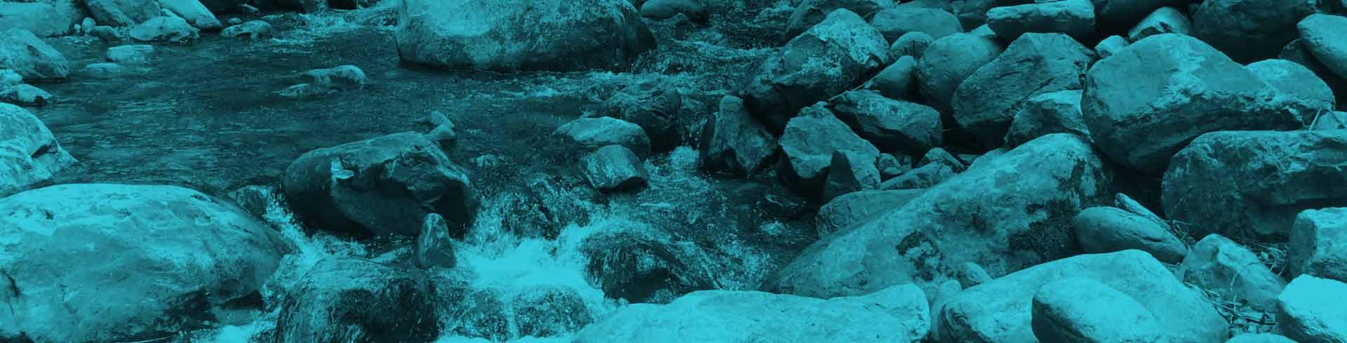 Modelación de la calidad del agua en ríos: sustancias tóxicas